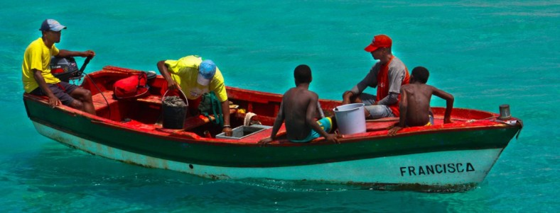 cropped-20120730-cape-v-fish-boat-1.jpg